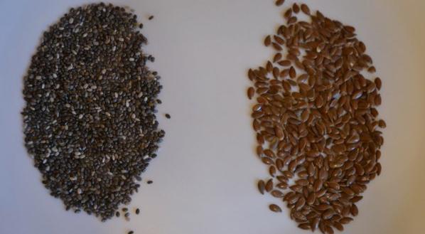 Как выглядят семена нарцисса фото
